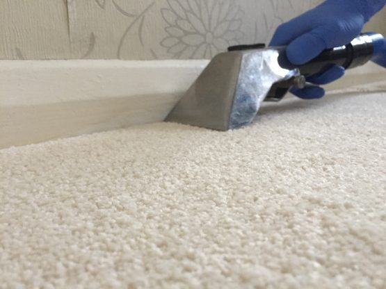 carpet cleaning in Hook, Hampshire