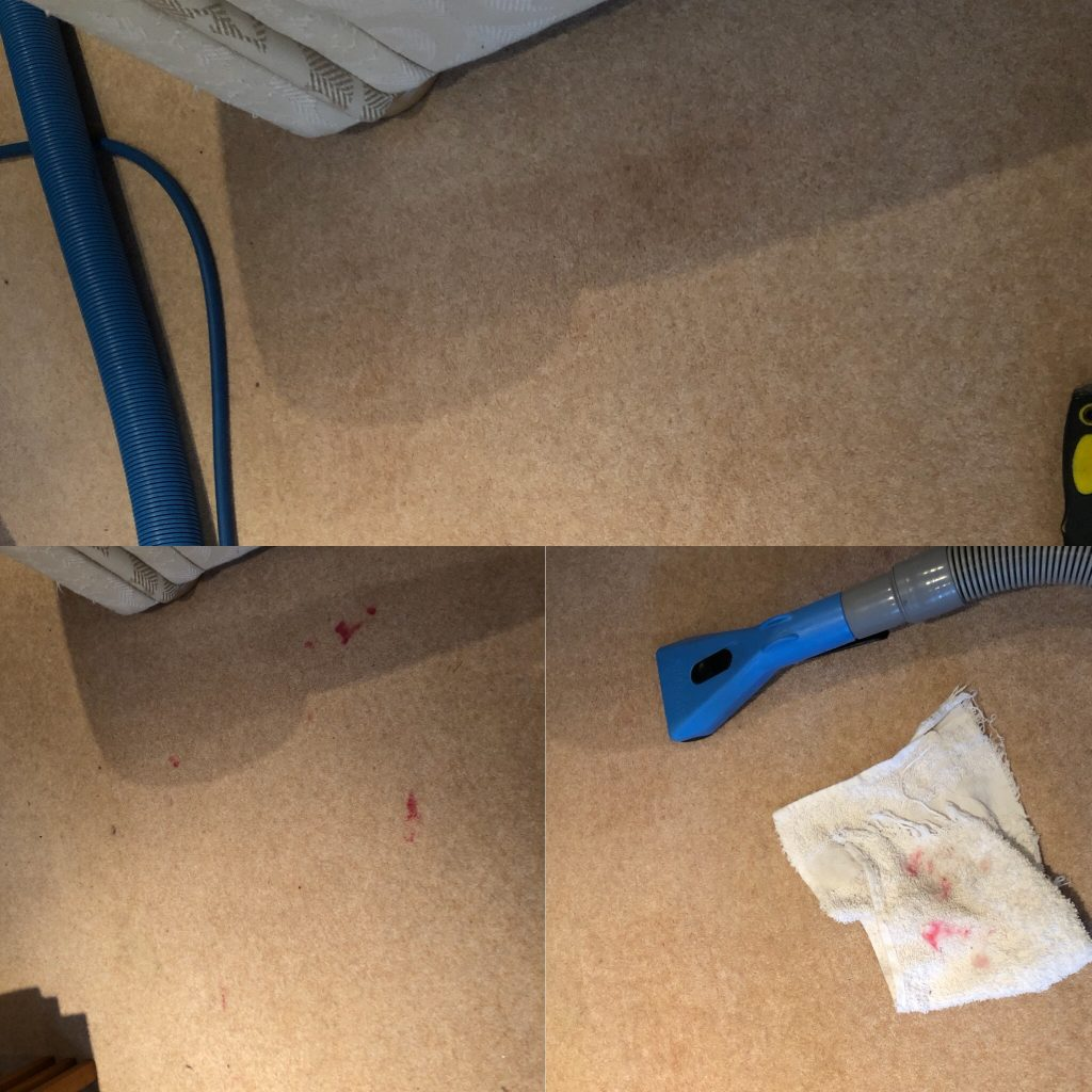 wool, carpet, lipstick, stain removal